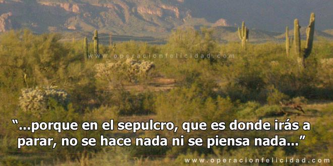Foto desierto Arizona - muerte y desolación