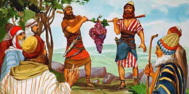 Caleb siervo de Dios - Tierra Prometida