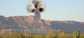 Lluvia abundante en el desierto - Bendicion