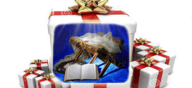 Navidad - Regalo de Cristo a la humanidad