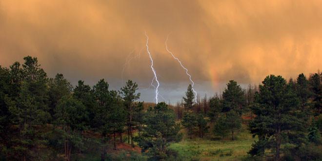 Foto - Tormenta eléctrica en un bosque