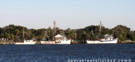 Barco Embarcacion Mar